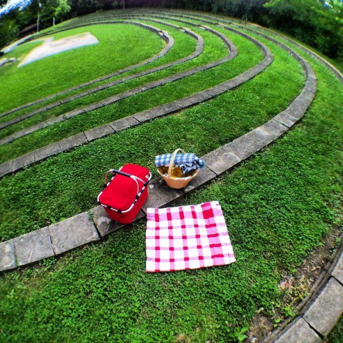 Picnic in Nisbit Park